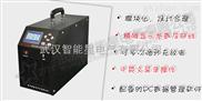 智能蓄电池活化仪-武汉智能星