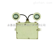 华荣GCD803-YJ防爆应急灯报价