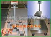 EX-GH-TCS-75公斤带报警防爆台秤,防爆电子秤