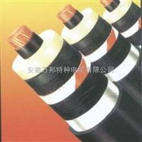 VV-T同心导体电缆