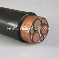 BPYJVTP2-TK电缆,BPYJVTP2-TK变频电缆