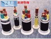 ZA-DJVPVP22-百色亨仪牌ZA-DJVPVP22计算机电缆单价