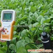 土壤水分测量仪西葫芦日光温室种植