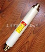 XRNT-24/125A_XRNT-24/125A_24KV熔断器