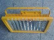 SW8131防爆节能泛光灯,SW8131-50w