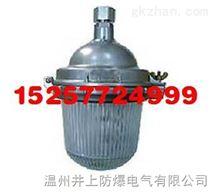 NFC9112防眩泛光灯防爆视孔灯防爆环型荧光灯