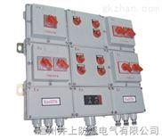 齐齐哈尔BXM(D)51防爆照明(动力)配电箱