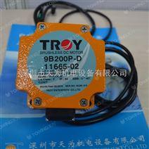 台湾TROY无刷直流电机