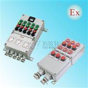 防爆照明(动力)配电箱BXM(D)化工厂壁挂式防爆照明开关箱不锈钢防爆配电箱配电柜