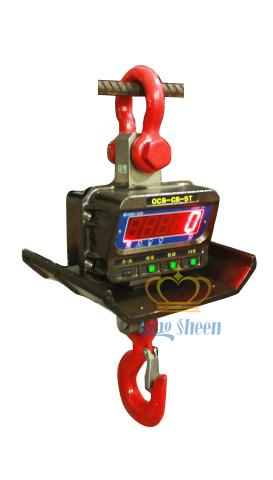 15T直视隔热电子吊秤