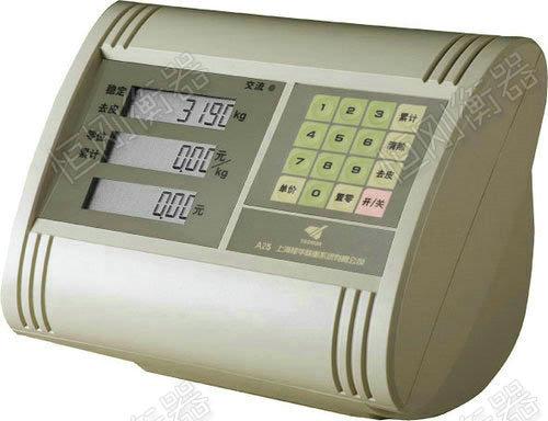 XK3190-A25称重显示器