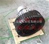 YX-81D/5.5KW台湾耐腐蚀高压风机-防腐高压鼓风机特殊制造