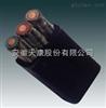023#线材ZR-YVFB电缆4*2.5mm2-阻燃扁电缆系列