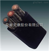YFFB电缆3*10+1*6mm2